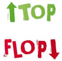 top-flop-2014-339x330@w_720